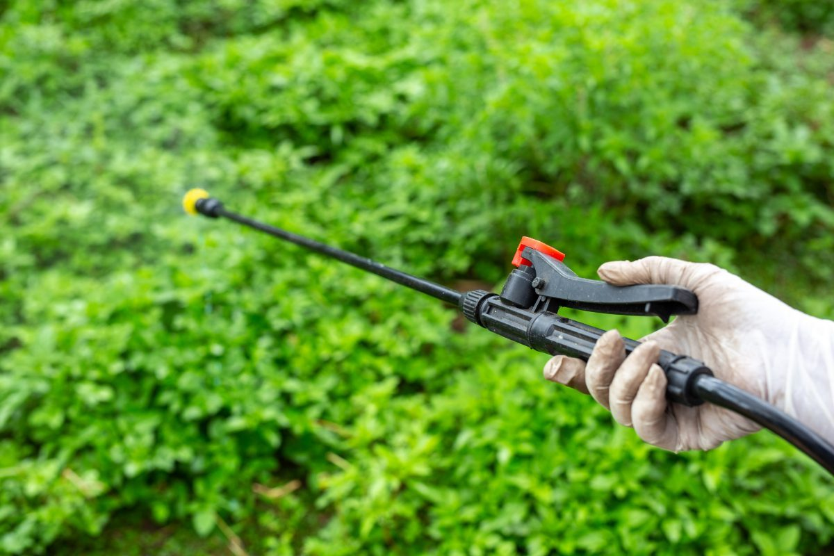Nivell bàsic de manipulador i aplicador de productes fitosanitaris
